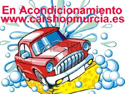 1614269358224_13764678 car segno lavaggio con spugna copia copia